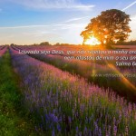 Papel de Parede – Salmo 66.20
