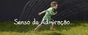 senso-de-admiracao-pps