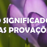 O SIGNIFICADO DAS PROVAÇÕES (vídeo)