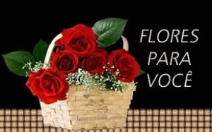 flores-para-voce