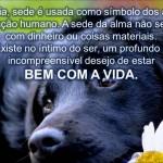 OLHE ALÉM DE VOCÊ (Vídeo)