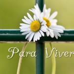 DICAS PARA VIVER MELHOR