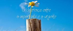 diferenca-entre-importante-e-urgente