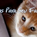 10 DICAS PARA O SEU FACEBOOK