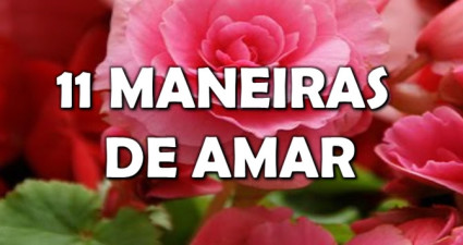 11-maneiras-de-amar-video