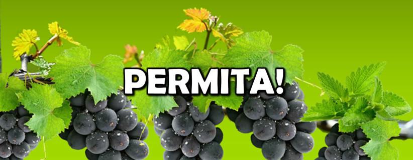 permita-pps