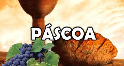 pascoa-video